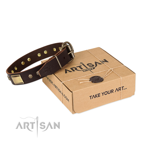 Amazing genuine leather collar for your beautiful canine