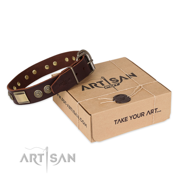 Durable hardware on leather dog collar for daily walking