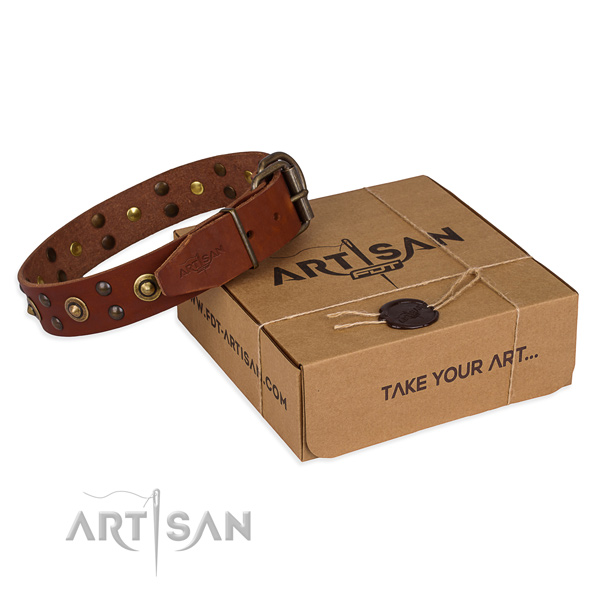 Reliable hardware on genuine leather collar for your impressive dog