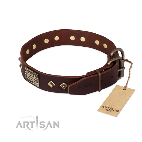 Leather dog collar with rust resistant traditional buckle and decorations