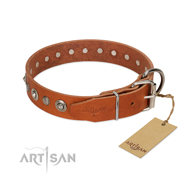 Strong genuine leather dog collar with impressive embellishments