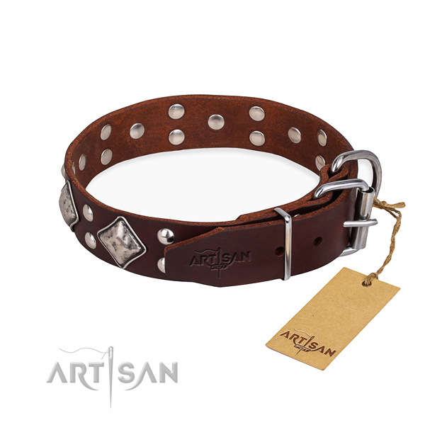 Natural leather dog collar with amazing corrosion resistant embellishments