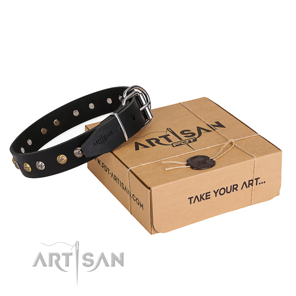 High quality full grain natural leather dog collar crafted for everyday use