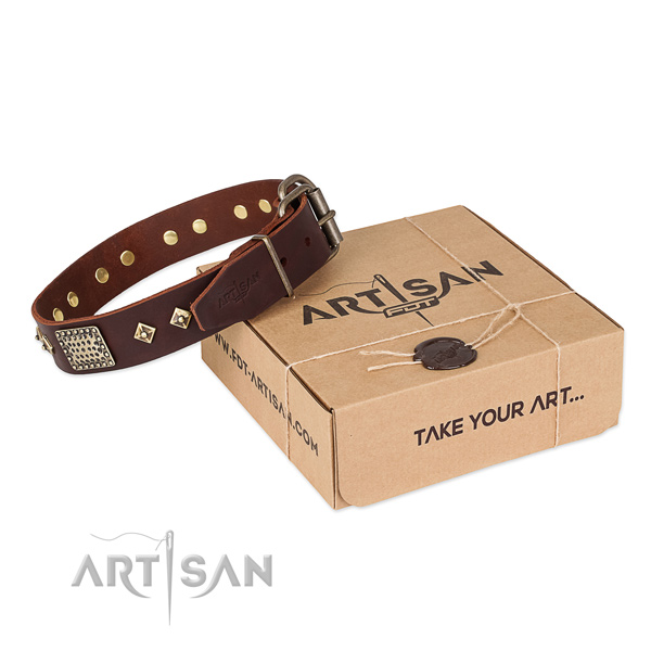 Top quality full grain natural leather collar for your stylish four-legged friend