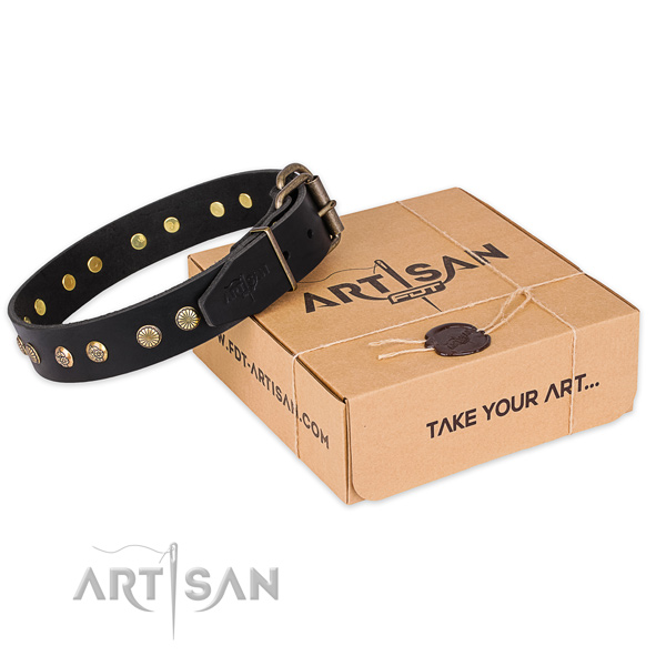 Rust resistant buckle on full grain natural leather collar for your attractive dog