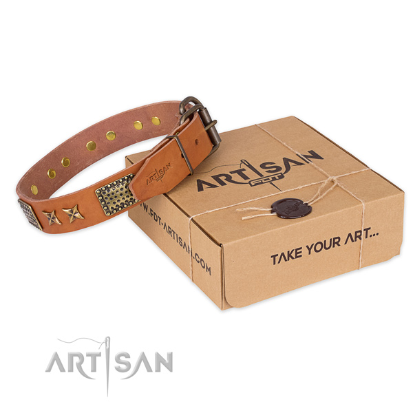 Durable buckle on full grain leather collar for your attractive canine