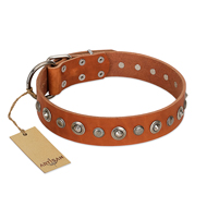 """Gorgeous Roundie"" FDT Artisan Tan Leather American Bulldog Collar with Chrome-plated Circles"