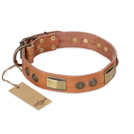 """Lost Desert"" FDT Artisan Leather American Bulldog Collar with Brass Decorations"