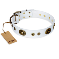 """Magnetic Appeal"" FDT Artisan White Leather American Bulldog Collar with Old Bronze Look Decorations"