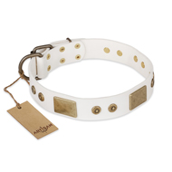 """Unforgettable Impress"" FDT Artisan Decorated Leather American Bulldog Collar with Decorations"