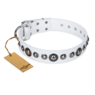"""Ice Age"" FDT Artisan White Studded Leather American Bulldog Collar"