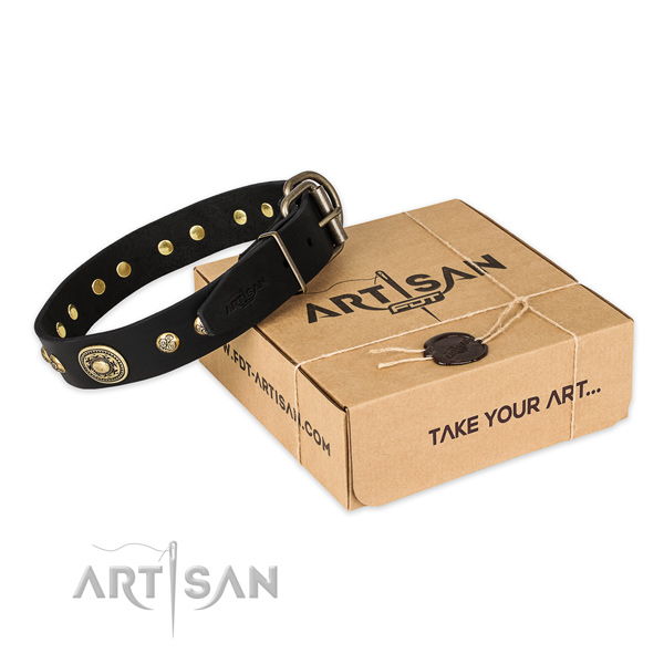 Strong traditional buckle on genuine leather dog collar for comfy wearing