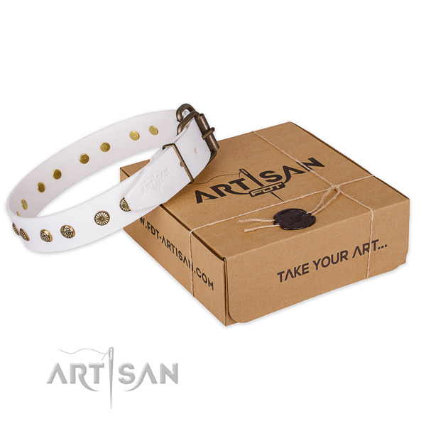 Reliable traditional buckle on natural genuine leather collar for your handsome pet