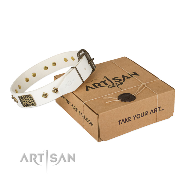 Best quality full grain genuine leather collar for your impressive doggie