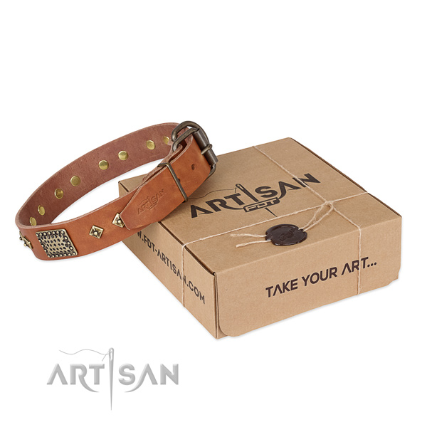 Comfortable natural leather collar for your impressive canine