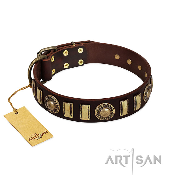 Flexible full grain leather dog collar with corrosion proof fittings