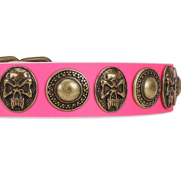 Corrosion proof adornments on genuine leather dog collar for your pet