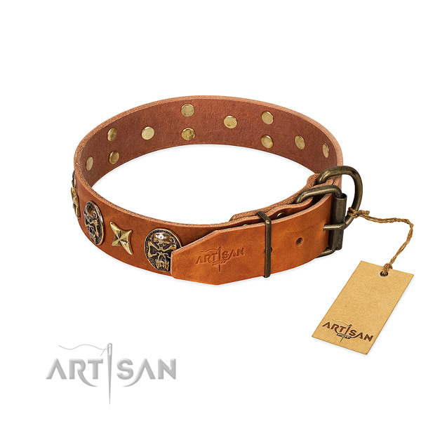Full grain genuine leather dog collar with rust resistant hardware and adornments
