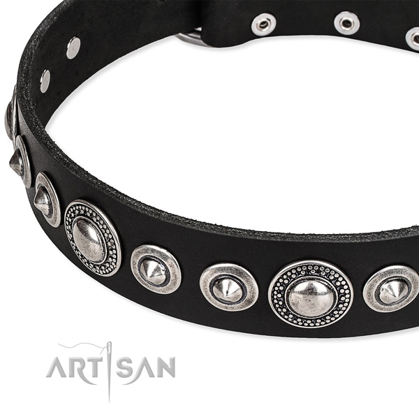 Daily walking embellished dog collar of high quality full grain natural leather