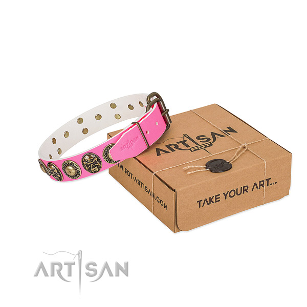 Reliable adornments on dog collar for everyday use