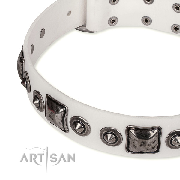 Durable genuine leather dog collar created for your attractive four-legged friend
