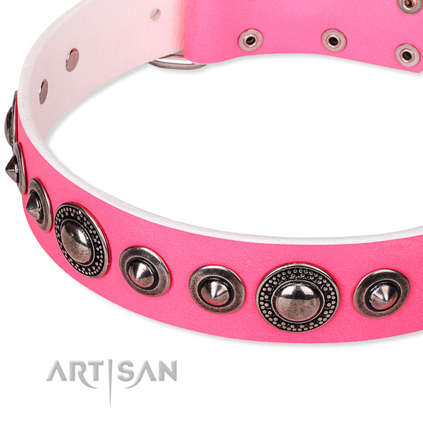 Handy use studded dog collar of top quality full grain leather