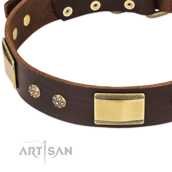 Corrosion proof fittings on genuine leather dog collar for your four-legged friend