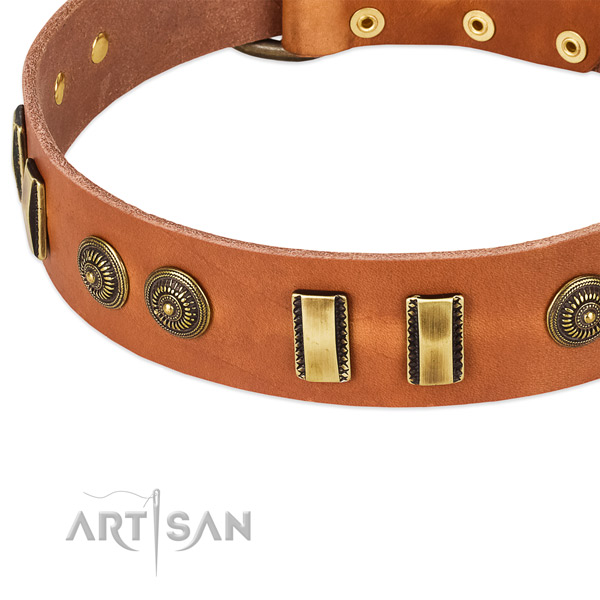 Corrosion resistant adornments on natural leather dog collar for your four-legged friend