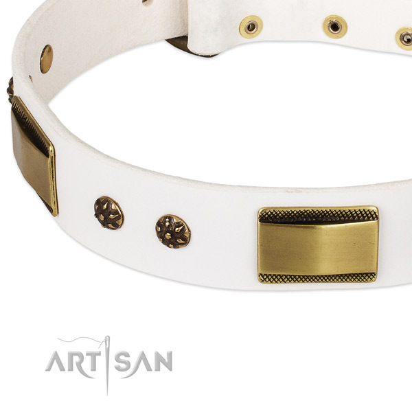 Strong embellishments on full grain leather dog collar for your canine