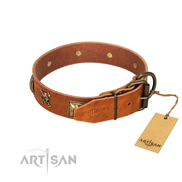Fashionable full grain leather dog collar with corrosion proof embellishments
