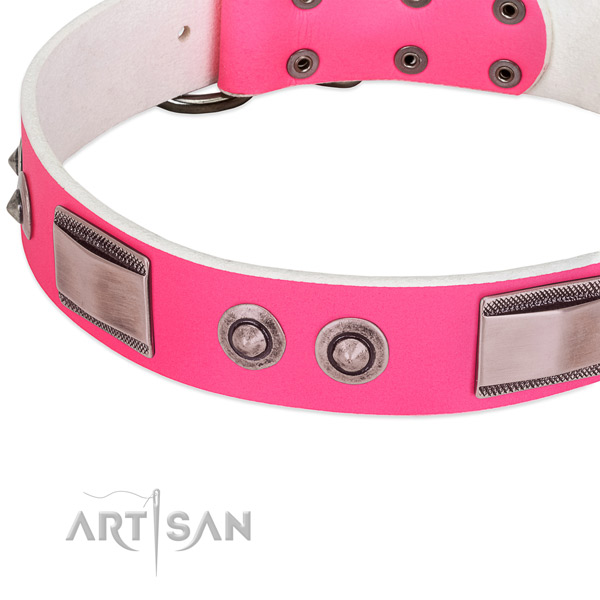 Exceptional leather collar with embellishments for your doggie