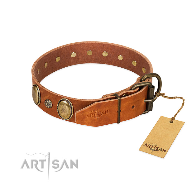 Walking best quality full grain leather dog collar