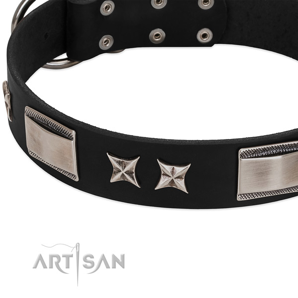 Reliable genuine leather dog collar with reliable traditional buckle