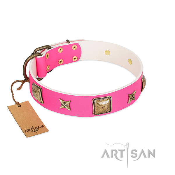 Full grain leather dog collar of top rate material with unusual embellishments