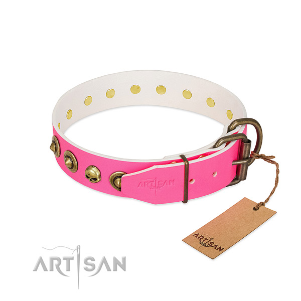 Full grain leather collar with incredible decorations for your four-legged friend