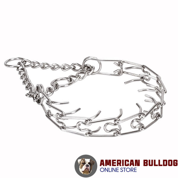 Pinch collar of stainless steel for ill behaved dogs