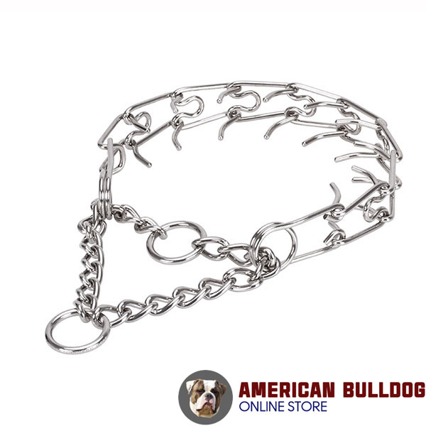 Adjustable stainless steel dog pinch collar with removable prongs for medium and large dogs