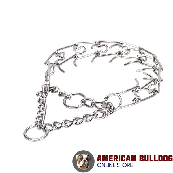Pinch collar of rust resistant stainless steel for badly behaved canines