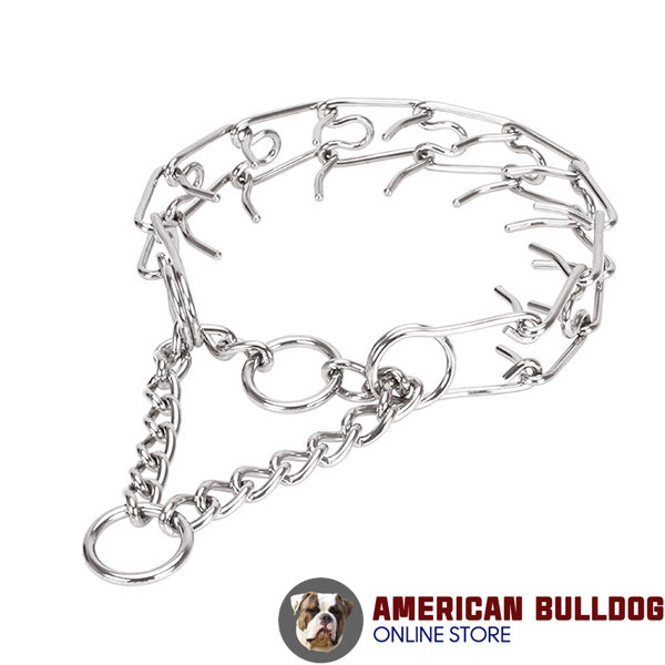 Stainless steel dog pinch collar for large canines