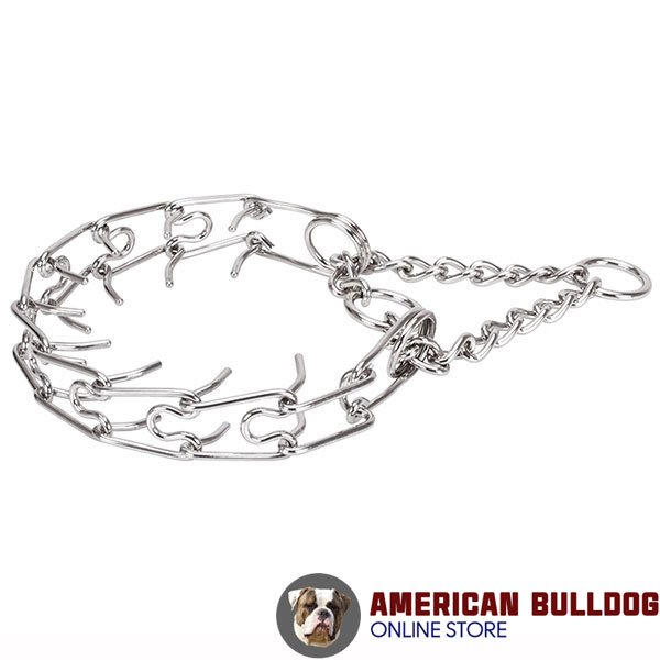 Dog prong collar of dependable stainless steel for large breeds