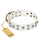 """Rock the Sky"" Durable FDT Artisan White Leather American Bulldog Collar with Chrome-plated Decorations"