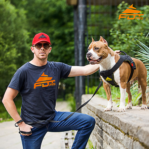 Men T-shirt of Top Quality Cotton with Pro Logo for Dog Trainers