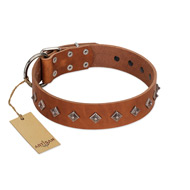 """Broadway"" Handmade FDT Artisan Tan Leather American Bulldog Collar with Dotted Pyramids"