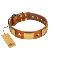 """Mutt The Daredevil"" FDT Artisan Tan Leather American Bulldog Collar with Old Bronze-like Skulls and Plates"