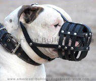 Everyday Light Weight Ventilation American Bulldog muzzle M41