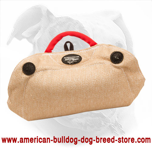 American Bulldog Bite Developer Made of Jute