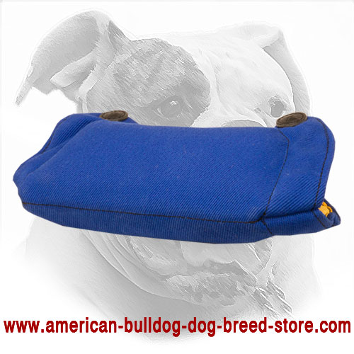 French Linen American Bulldog Bite Builder