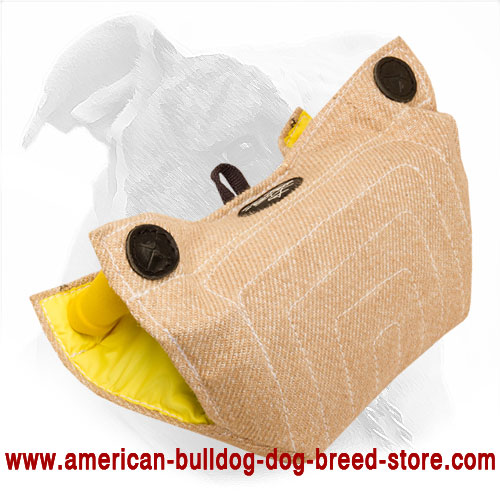 American Bulldog Bite Builder for Puppy Training