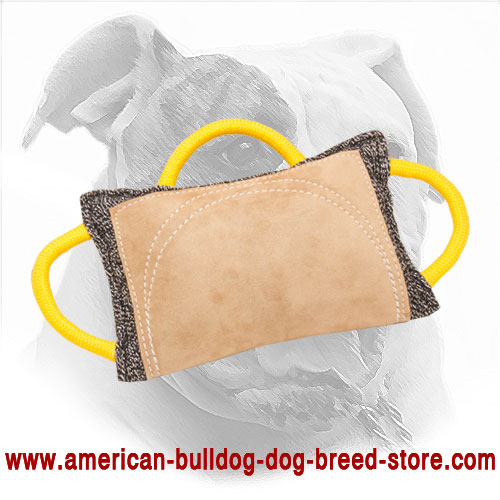 American Bulldog Bite Pad for Training