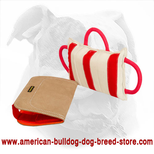 American Bulldog Bite Pillow for Dog Training